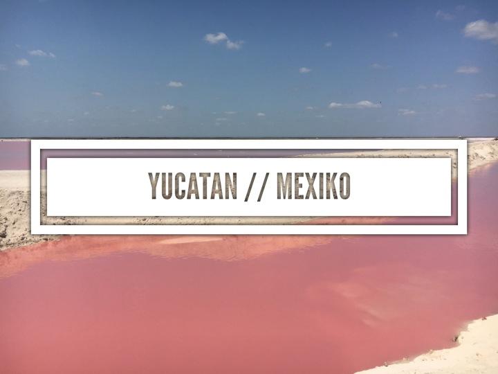 Yucatan // Mexiko